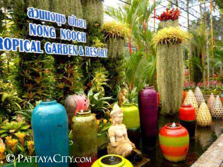 pattaya_city_nongnooch (15).jpg