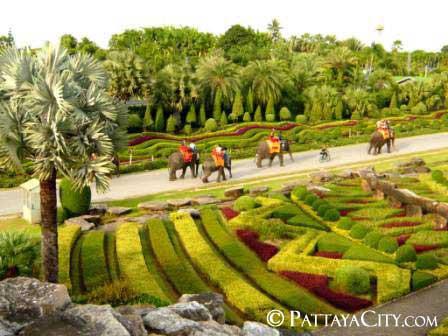 pattaya_city_nongnooch (50).jpg